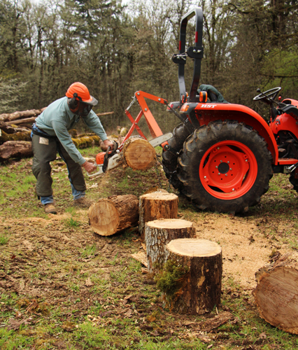 Cut Wood Logs ~ Small wood lot tools timber maintenance pre commercial